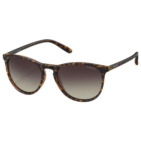 Polaroid-Sunglasses-PLD6003